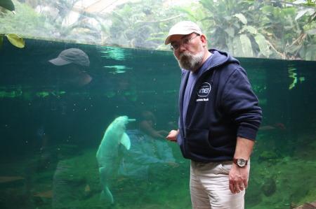 Zoo strich duisburg Wilhelma